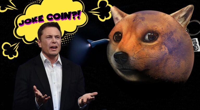 """Dogecoin zamiast """"lecieć na księżyc"""" spada w dół…"""